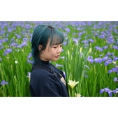 療愈 鳶尾花:相簿封面