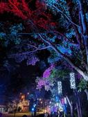 石岡 花漾藝術燈會:IMG_20210212_205223_調整大小.jpg