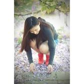 紫藤2015:相簿封面