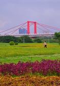 光復橋 河邊 蝴蝶公園:DSC_0144_調整大小.JPG
