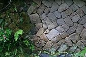 景觀-平湖露營埸98-12-13:IMG_0124.JPG
