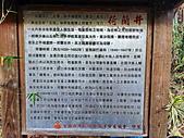 2020 木棉花:IMG_20200328_173424_調整大小.jpg