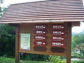 東勢林場-太陽鳥:DSC03747.JPG