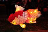 鯉魚燈:DSC_0537_調整大小.JPG
