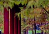 2019 原住民文化公園:DSC_0077_調整大小.JPG