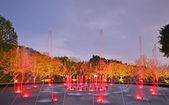 陽明山之夜 2019:DSC_0319_調整大小.JPG