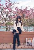 內湖 櫻花 2020:DSC_0777_調整大小.JPG