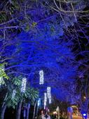 石岡 花漾藝術燈會:IMG_20210212_205319_調整大小.jpg
