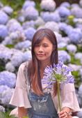 繡球花ˊ習拍:DSC_0204_調整大小.JPG