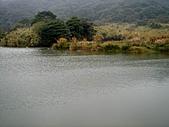 竹子湖12-30:DSC01734.JPG