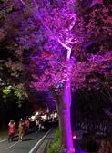 石岡 花漾藝術燈會:IMG_20210212_205946_調整大小.jpg