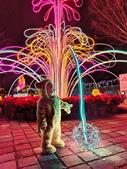 石岡 花漾藝術燈會:IMG_20210212_210822_調整大小.jpg