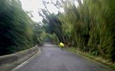 竹子湖12-30:DSC01736.JPG