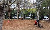 中科崴立櫻花公園 櫻花賞:IMG_20210212_163214_調整大小.jpg