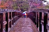 雨中 湯湖:DSC_0750_調整大小.JPG