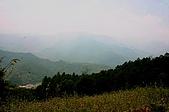 風景-松濤意境98-9-3:IMG_0273.JPG