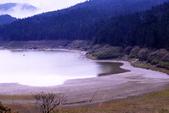 槭紅太平山:DSC_2322_調整大小.JPG