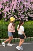 2020泰山 楓樹腳河濱公園 蒜香藤花:DSC_0540_調整大小.JPG