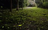 華梵大學 螢火蟲之夜:DSC_0180_調整大小.JPG