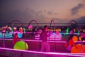 2020閃漾 大都會公園 花燈:DSC_0144_調整大小.JPG