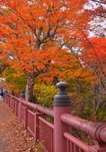 中禪寺湖 楓景:DSC_0445_調整大小.JPG