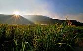 溫婉的竹湖: