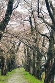 弘前公園 櫻花祭 花見:01F2D7C2-DB2A-46BD-A55B-290F9E6F8940_調整大小.jpg
