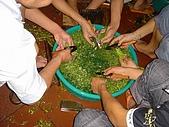 越南:DSC09634.JPG