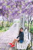 紫藤2015: