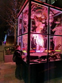 倫敦夜景:IMG_20181207_193818_調整大小.jpg