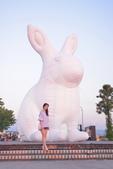 2019白晝之夜 好大的兔子: