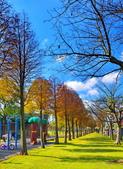 玉山公園: