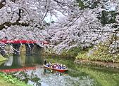 日本櫻花見:026AE9A8-93D3-4364-8529-F542C5D1F499_調整大小.jpg