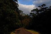 風景-平湖12-18:DSC_0259.JPG