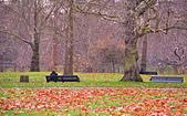 英國 白金漢宮 公園:DSC_0224_調整大小.JPG