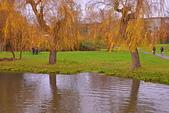 劍橋河畔:DSC_0625_調整大小.JPG