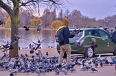 英國 白金漢宮 公園:DSC_0444_調整大小.JPG