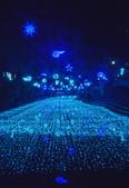 中港大排燈會,藍海地球.:DSC_0182_調整大小.JPG