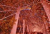 板橋 耶誕城2018:DSC_0157_調整大小.JPG