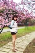 中科崴立櫻花公園 櫻花賞:IMG_20210212_161552_調整大小.jpg