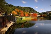 湖岸落羽松 原住民文化主題公園:DSC_0038_調整大小.JPG