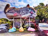 淡水國小的 貓:IMG_20210313_140237_調整大小.jpg