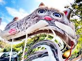 淡水國小的 貓:IMG_20210313_140317_調整大小.jpg