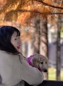 湖岸落羽松 原住民文化主題公園:DSC_0194_調整大小.JPG