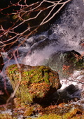龍頭瀑布:DSC_0512_調整大小.JPG
