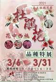 台大杜鵑花節2021:129038_調整大小.jpg