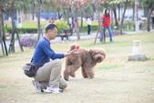 大型貴賓犬:DSC_8753_調整大小.JPG