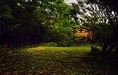 華梵大學 螢火蟲之夜:DSC_0165_調整大小.JPG