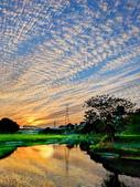溪邊黃昏:IMG_20200107_170814_調整大小.jpg