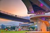 2020閃漾 大都會公園 花燈:DSC_0119_調整大小.JPG